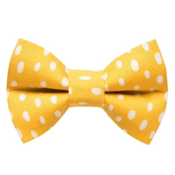 The Always Sunny in Pickledelphia - Small Pet Bow Tie