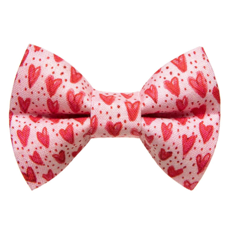 Secret Admirer - Large Pet Bow Tie