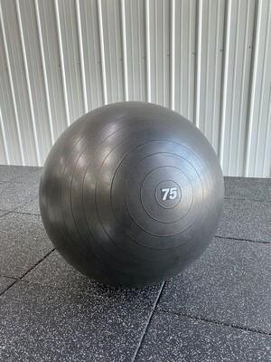 Physio Ball