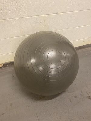 Physio Ball - Black