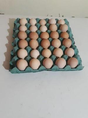 Huevos x 30 plancha / La calera