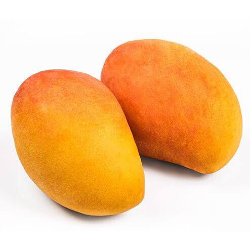 Mango edward x kg