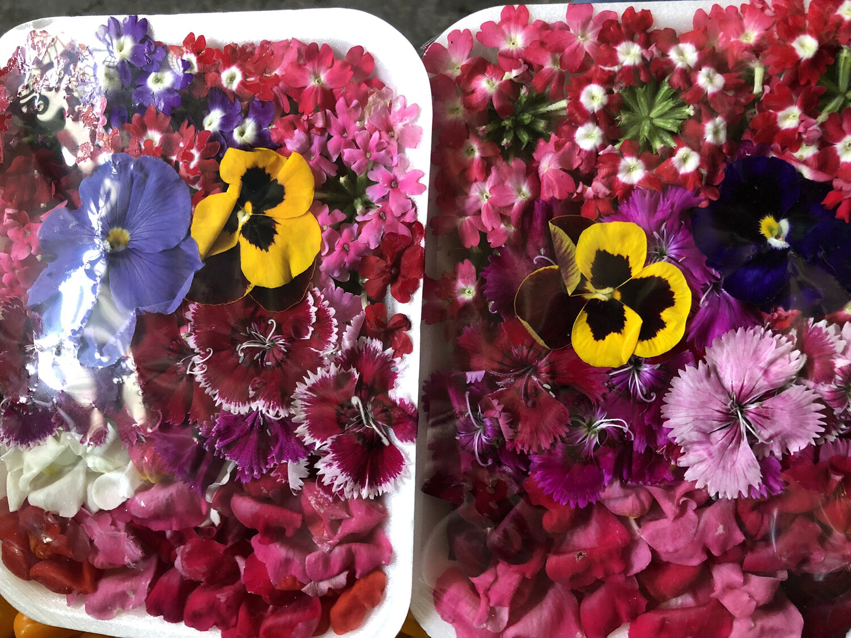 Flores comestible x bandeja