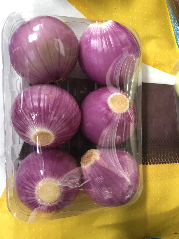Cebolla orgánica por bandeja