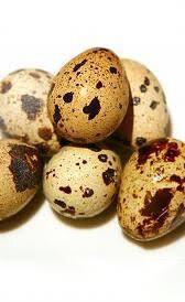 Huevos de codorniz 1/4 de kilo