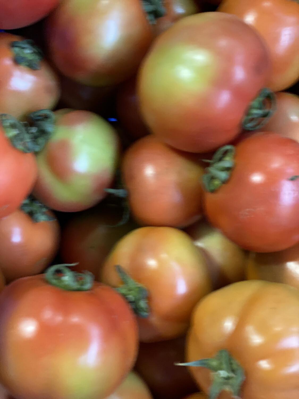 Tomate itacom x kilo