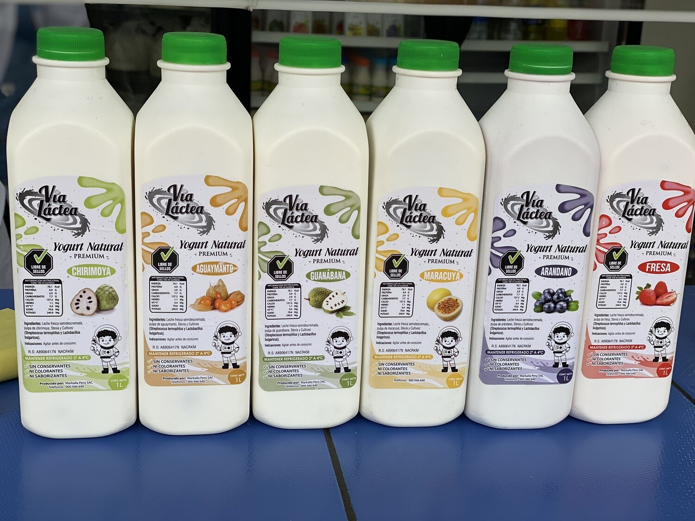 Yogurt premiun Frutado en trozos Via láctea 100% stevia
