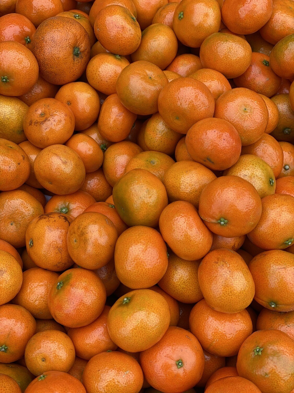 Mandarina bb x kilo