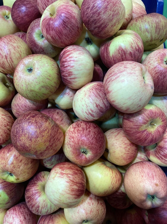 Manzana delicia x kilo pequeña
