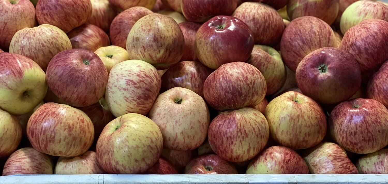 Manzana delicia x kilo serranita grande