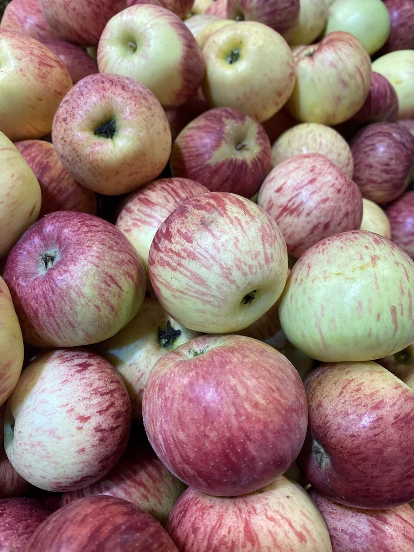 Manzana delicia x kilo bb