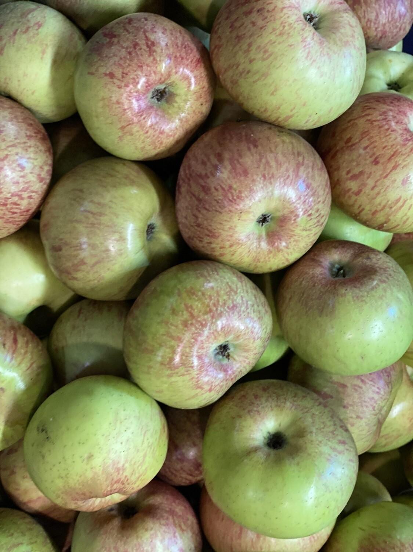 Manzana Delicia verde serranita x kilo