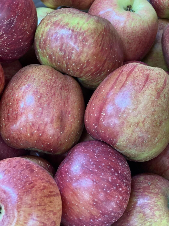 Manzana delicia grande x kilo