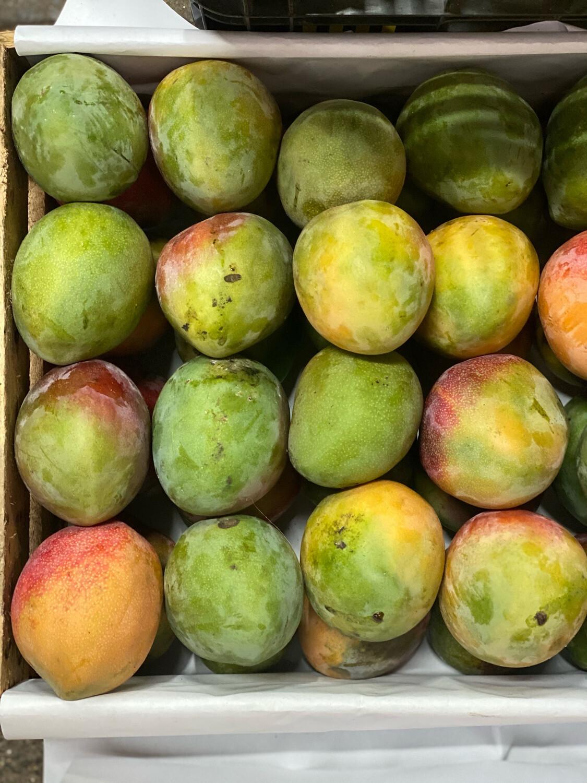 Cajón mango kent pequeño