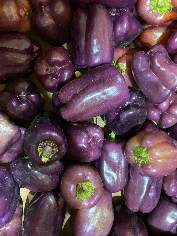 Pimiento morado orgánico x kilo