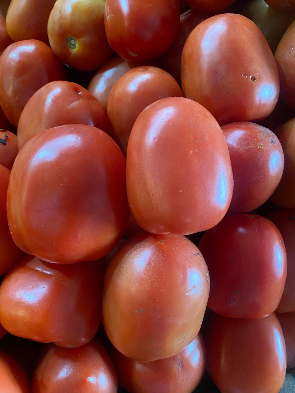 Tomate x kilo maduro extra salsa