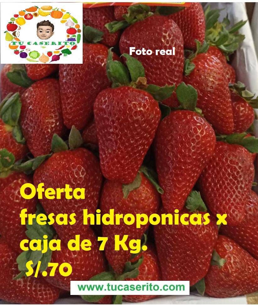 Fresas hidroponicas  x caja de 7 Kg.
