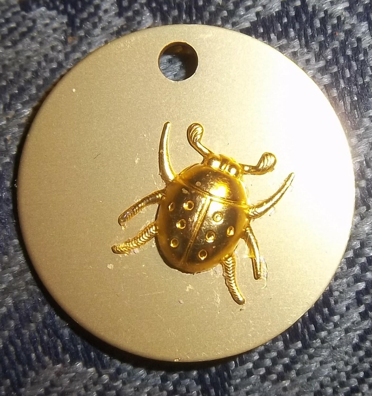 GOLDEN Ladybug on Auric Disk 00008