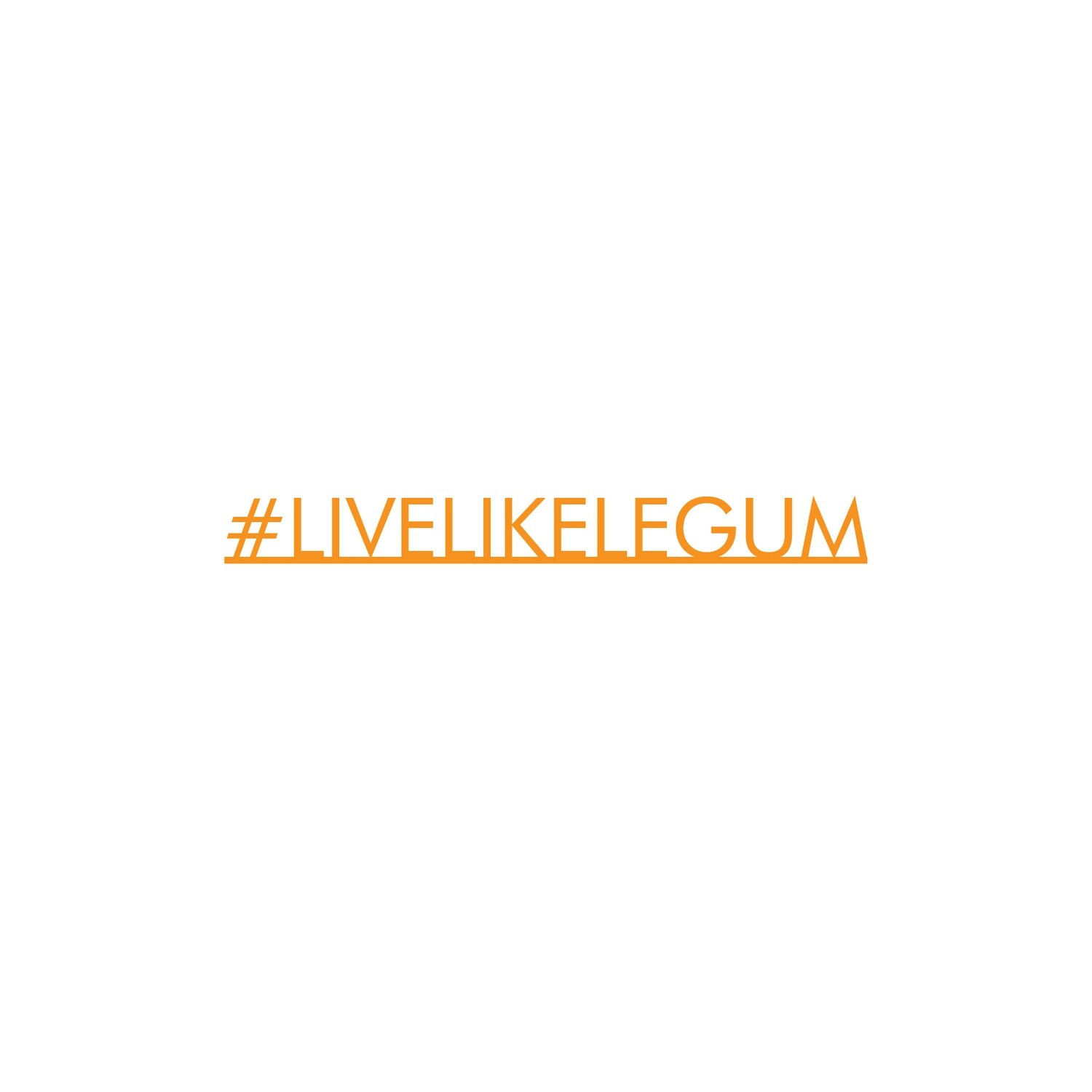 #LiveLikeLegum Orange Desk Accessory