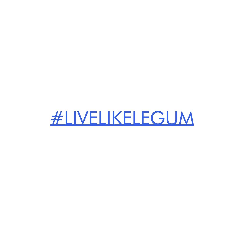 #LiveLikeLegum Blue Desk Accessory