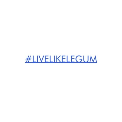 #LiveLikeLegum Blue Desk Accessory