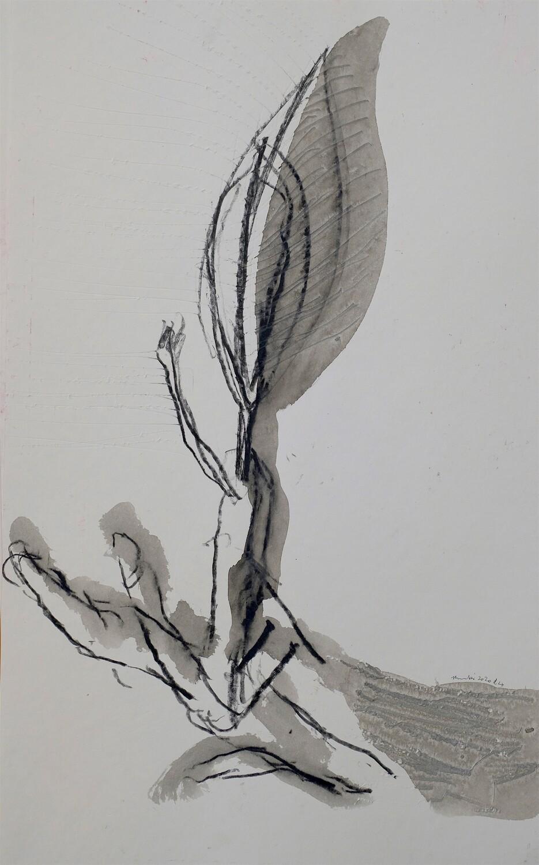 Shwaki Youssef - 'Untitled'