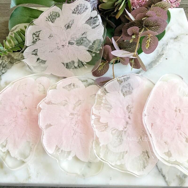 palette rose