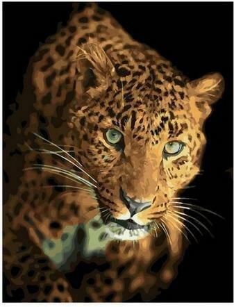 Картина по номерам PK68078 Охотящийся леопард 40х50см