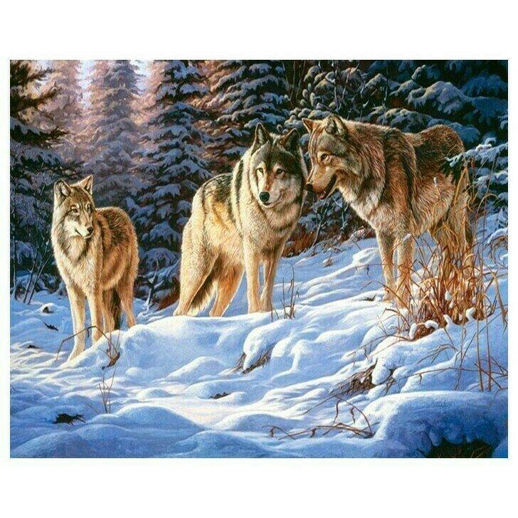 Алмазная мозаика GF 661 Волки в зимнем лесу 40*50