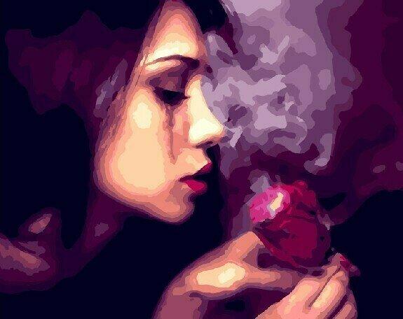 Картина по номерам 40х50 - Аромат розы