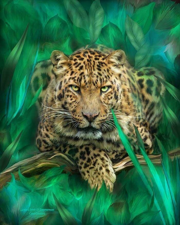 Картина по номерам 40х50 - Дикий леопард