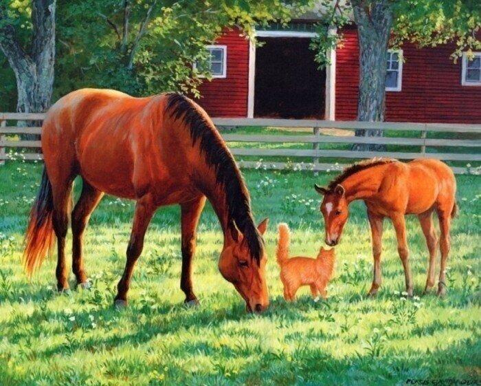 Картина по номерам 40х50 - Лошади и кошка
