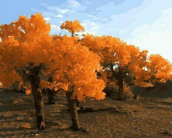 Картина по номерам 40х50 - Осенние деревья