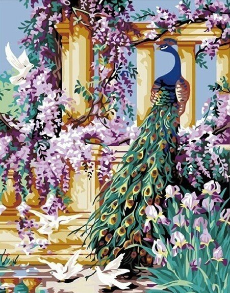 Картина по номерам 40х50 - Павлин в саду