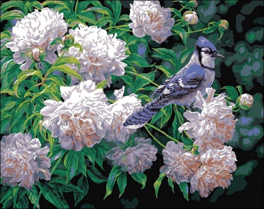 Картина по номерам 40х50 - Птичка на цветке