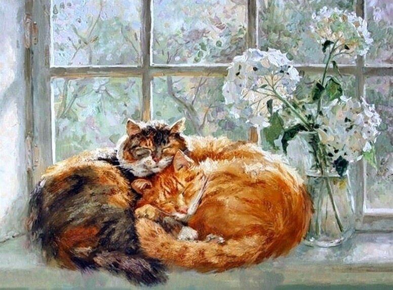 Картина по номерам 40х50 - Спящие котики