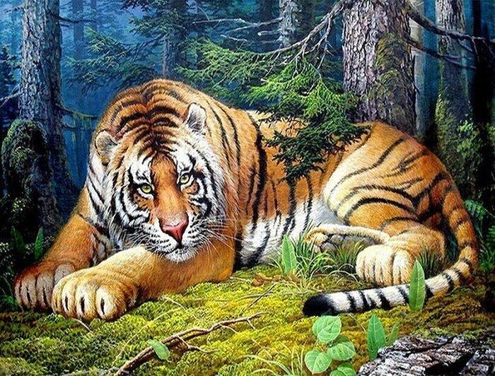 Картина по номерам 40х50 - Уссурийский Тигр