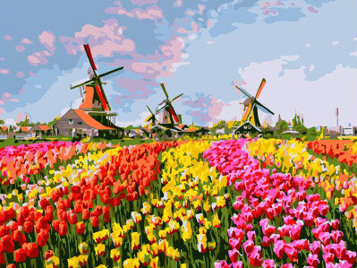 Картина по номерам EX 6367 Разноцветное поле тюльпанов 30*40