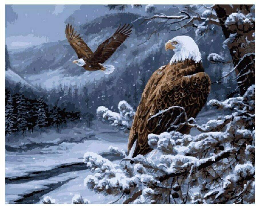 Картина по номерам GX 7124 Гордые птицы 40*50