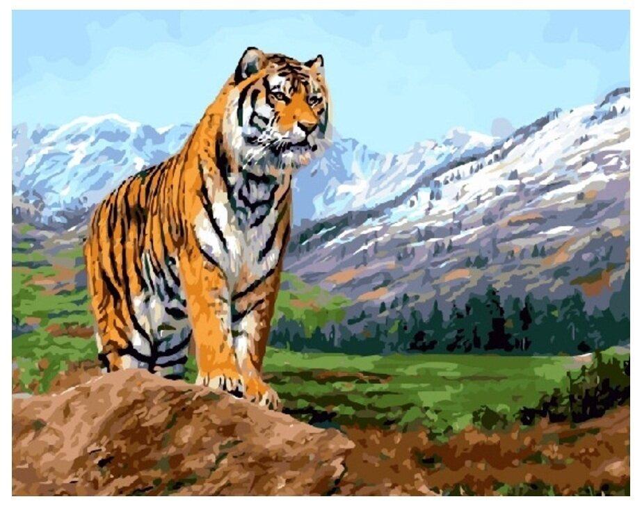 Картина по номерам GX 8305 Тигр в горах 40*50