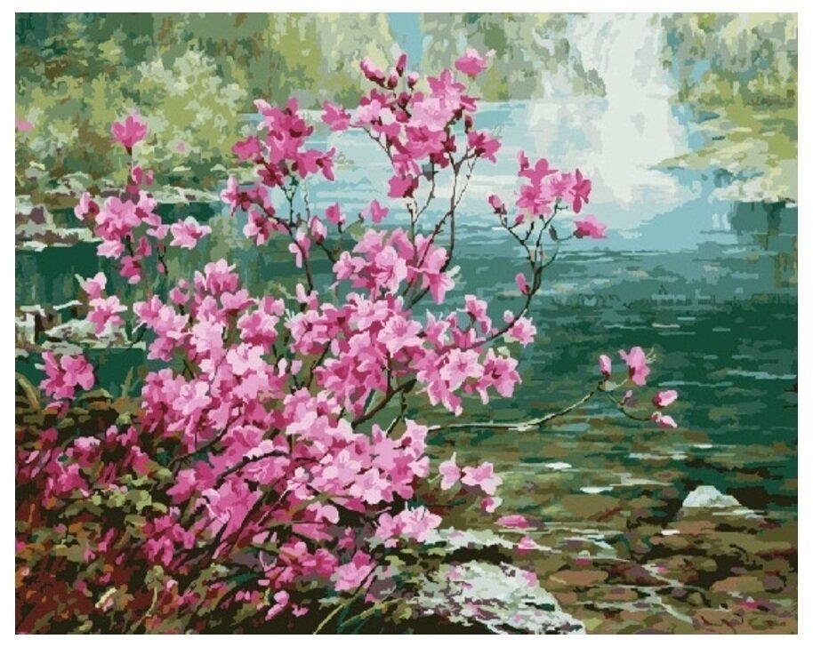 Картина по номерам GX 8473 Багульник у реки 40*50