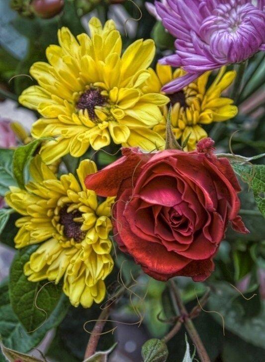 "Картина по номерам Paintboy GX7649 ""Хризантемы и роза"" 40х50см"