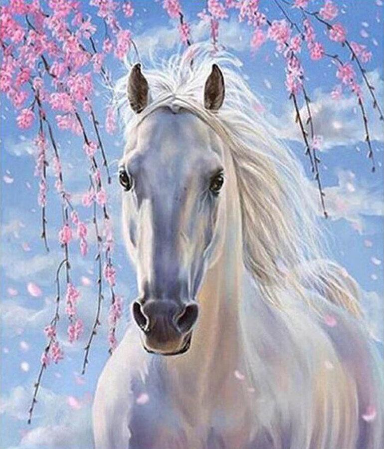 "Картина по номерам Paintboy GX8528 ""Белый конь"" 40х50см"