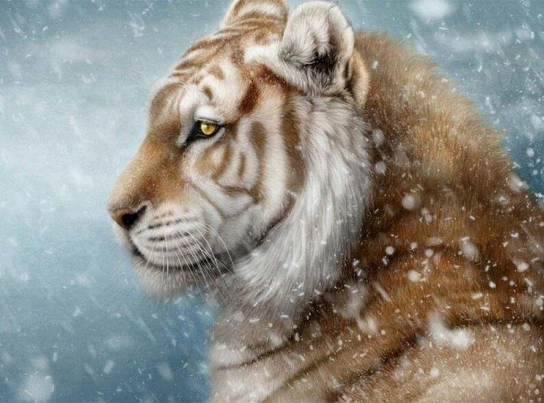 "Картина по номерам Paintboy GX9641 ""Снежный барс"" 40х50см"