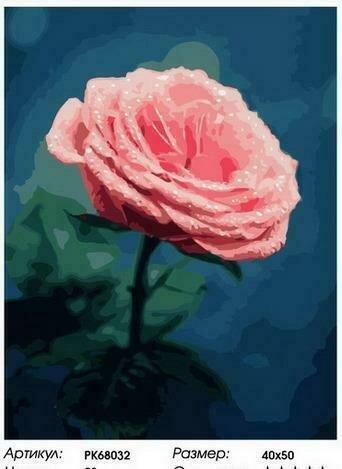 Картина по номерам PK68032 Нежный розовый бутон 40х50см