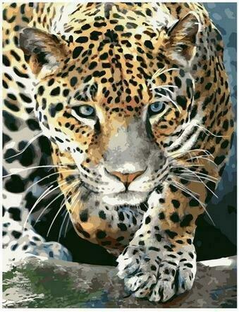 Картина по номерам PK68059 Крадущийся леопард 40х50см