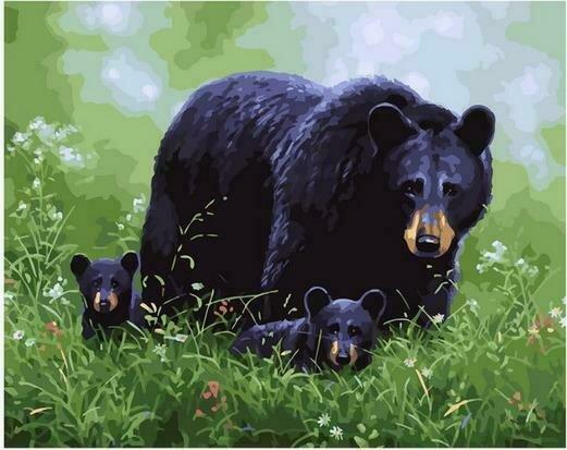 Картина по номерам PK68068 Медведица с потомством на полянке 40х50см
