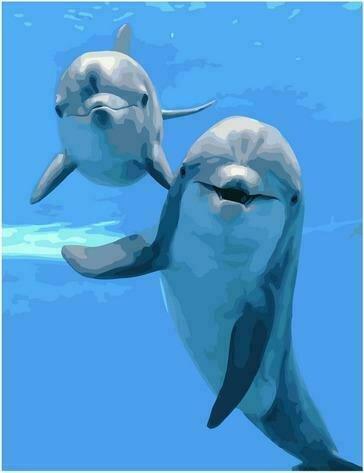 Картина по номерам PK72041 Дружелюбные дельфины 40х50см