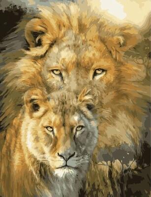 Картина по номерам GX 34488 Лев и львица 40х50 см