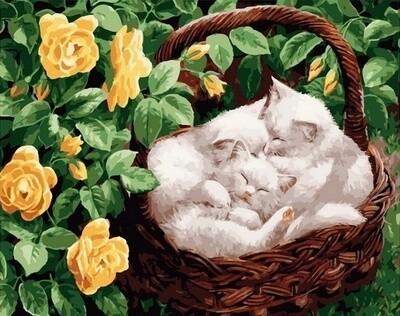 Картина по номерам Paintboy, RDG-4257 Корзина котов 40х50см